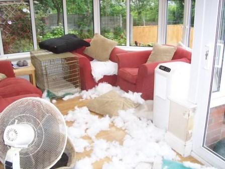 destruccion-hogar