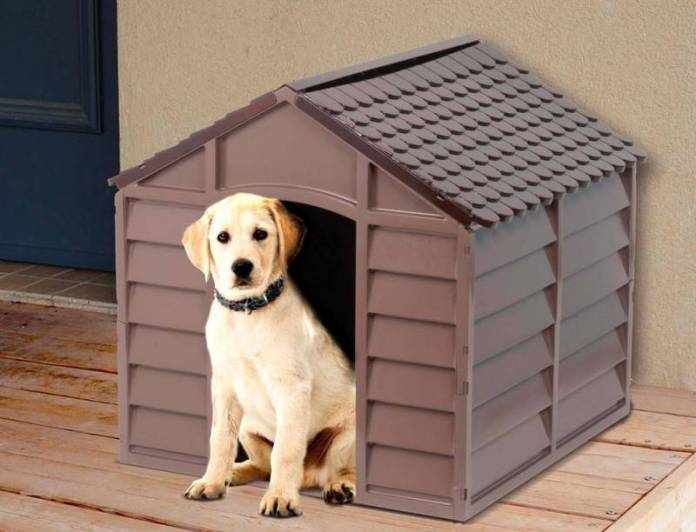 Casas Para Perros Grandes Baratas Las 5 Más Baratas De